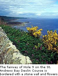 St. Andrews Bay Resort