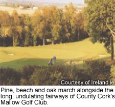 County Cork's Mallow Golf Club